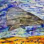 """06.10.2020 / """"Кашалот"""". Автор работы: Сергеева Анастасия (8 лет)"""